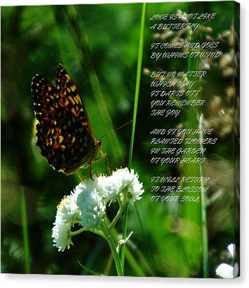 A Butterfly Poem About Love Canvas Print by Jeff Swan