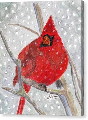 A Cardinal Winter Canvas Print
