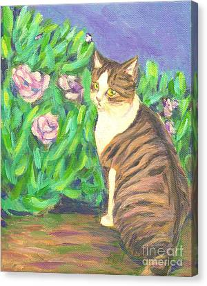 A Cat At A Garden Canvas Print