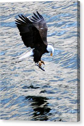 A Catch Of Life Canvas Print