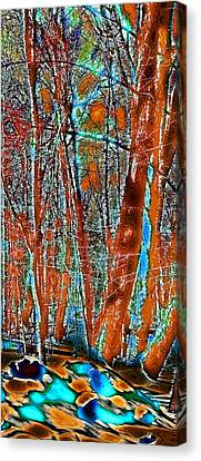 A Change In The Seasons Vi Canvas Print