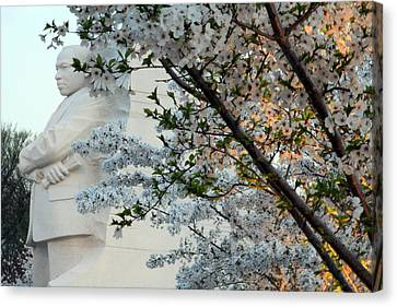 Canvas Print featuring the photograph A Cherry Blossomed Martin Luther King by Cora Wandel