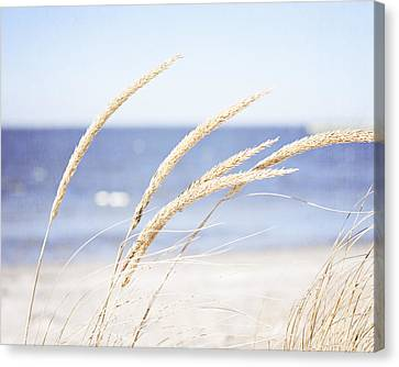 A Child Of The Summer Breeze Canvas Print by Carolyn Cochrane