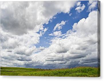 A Cloudy Day Canvas Print by Lisa Plymell