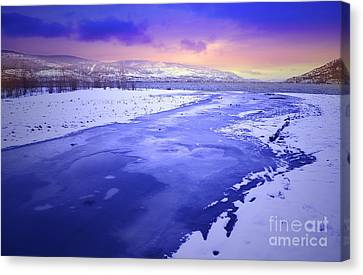 A Cold New Years Eve Canvas Print by Tara Turner