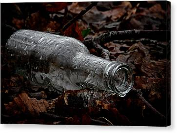 Forest Floor Canvas Print - A Cold One by Odd Jeppesen