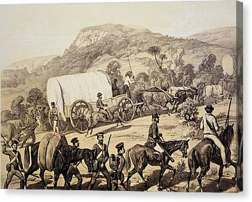 Colonial Man Canvas Print - A Convoy Of Wagons by English School