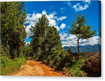 A Country Road In Colombia. Canvas Print by Jess Kraft