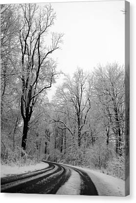 A Curve In The Road Canvas Print by Tracy Winter