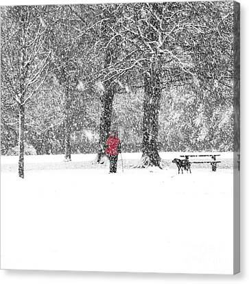 A Dash Of Red Canvas Print by Karin Ubeleis-Jones