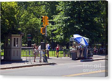 A Day In Central Park Canvas Print by Madeline Ellis