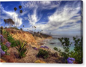 A Day In Laguna Beach Canvas Print by Sean Foster