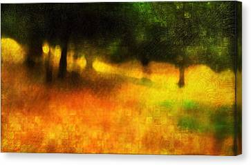 Dappled Light Canvas Print - A Day Out Of Time by Suzy Norris