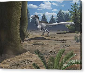 A Deinonychosaur Leaves Tracks Canvas Print by Emily Willoughby