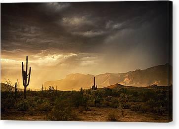 A Desert Monsoon Sunset  Canvas Print