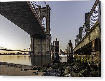 Canvas Print featuring the photograph A Different Look  by Anthony Fields