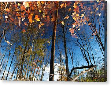 A Different Side Of Autumn Canvas Print