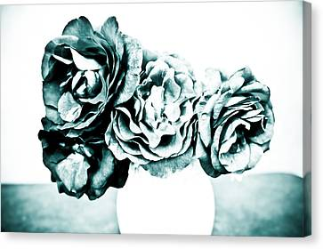 A Dream Of Roses Canvas Print by Ronda Broatch