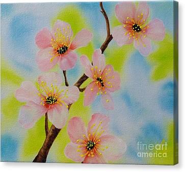 A Dream Of Spring Canvas Print by Carol Avants