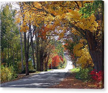 A Drive Through Autumn Beauty Canvas Print by Janet Ashworth