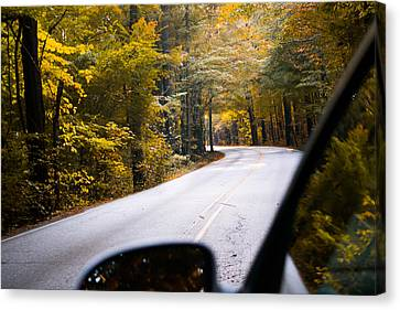 A Drive Through Autumn Canvas Print by Shelby  Young