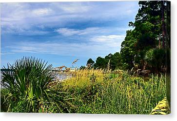 Panama City Beach Canvas Print - A Drive With A View by Debra Forand