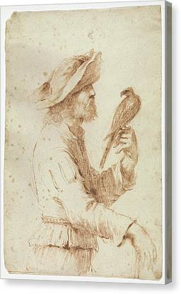 A Falconer In Profile To The Right Canvas Print by Follower of Guercino
