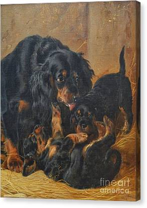 A Family Of Gordon Setters Canvas Print by Celestial Images