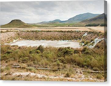 A Farmer's Watering Hole Canvas Print by Ashley Cooper