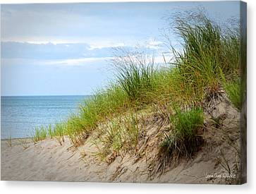 A Favorite Place Canvas Print by Lena Wilhite