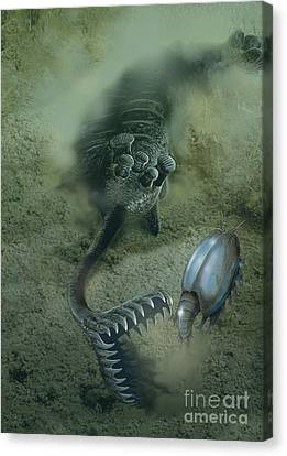 Feeding Canvas Print - A Fearsome Opabinia Found In The Middle by Jan Sovak