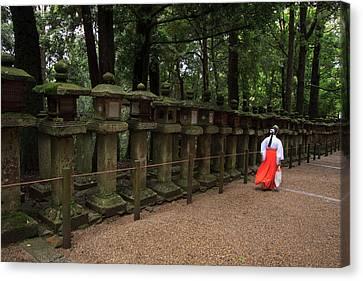 A Female Shrine Attendant Walks Canvas Print by Paul Dymond