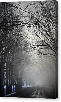 A Few Of My Favorite Things Trees In Fog Canvas Print by Penny Hunt