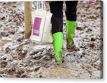 A Field Churned Up Into Mud Canvas Print by Ashley Cooper