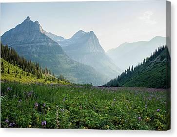 West Glacier Canvas Print - A Field Of Wildflowers At Glacier by Ben Horton