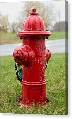 Canvas Print featuring the photograph A Fire Hydrant by Courtney Webster