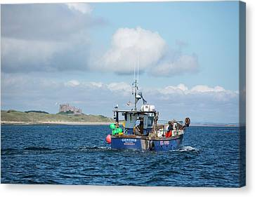 A Fishing Boat Canvas Print by Ashley Cooper