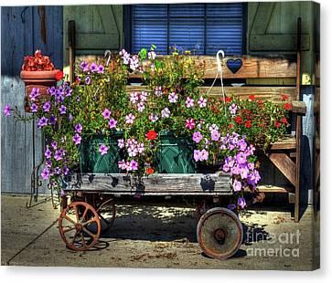 A Flower Wagon Canvas Print