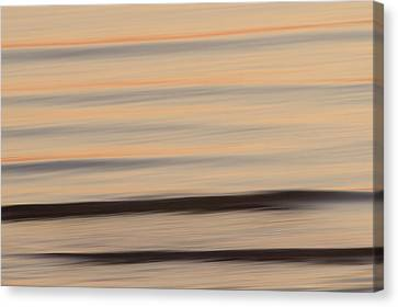 A Flying Gull Over The Lake Canvas Print by Phil Schermeister
