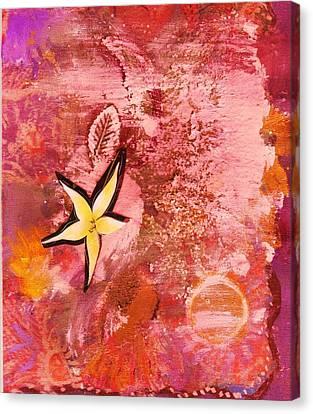 A Flying Star Flower Canvas Print by Anne-Elizabeth Whiteway