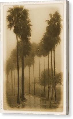 Canvas Print featuring the photograph A Foggy Day by Joseph Hollingsworth