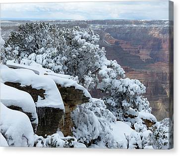 A Foot At The Canyon Canvas Print by Laurel Powell