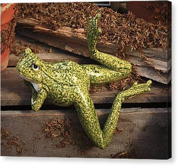 Canvas Print featuring the photograph A Frog's Life by Patrice Zinck