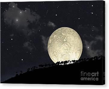 A Full Moon Rising Behind A Row Canvas Print by Marc Ward