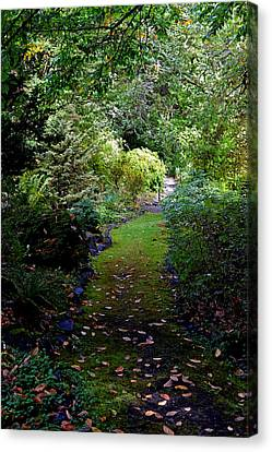 Canvas Print featuring the photograph A Garden Path by Anthony Baatz
