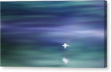 A Gentle Breeze Canvas Print by Kume Bryant