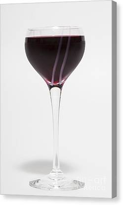 Long Stem Wine Glass Canvas Print - A Glass Of Red Wine by Diane Macdonald