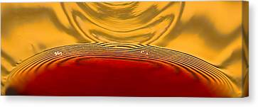 A Glass Of Wine-backlit With Blinds-and Wow Canvas Print by Gary Holmes