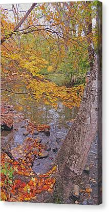 A Glimpse Of Fall Canvas Print