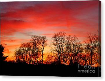 Canvas Print featuring the photograph A Glowing January Sunrise by Jay Nodianos